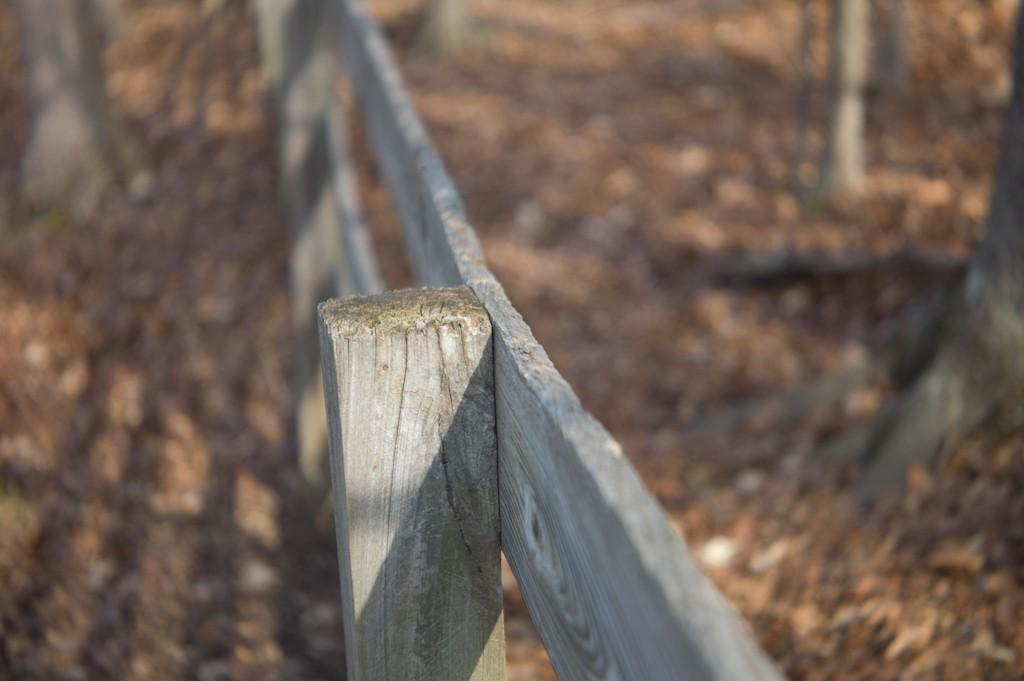 fence_f28.jpg