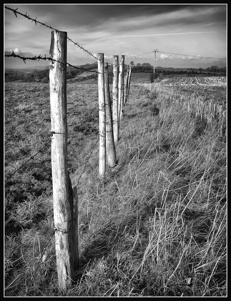 Fence_line_SFX.jpg