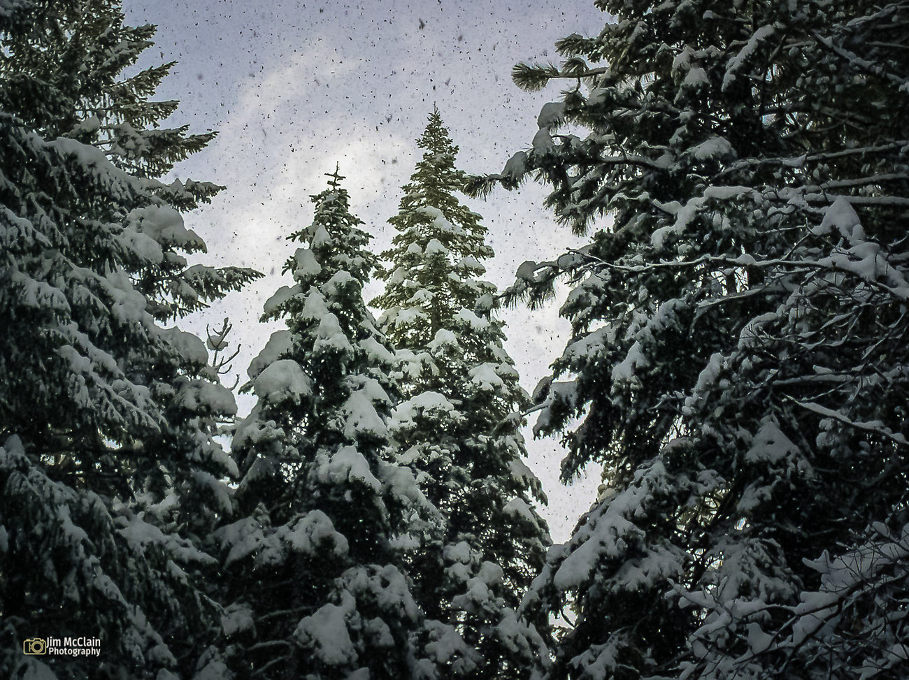 first-snow0412-59.jpg