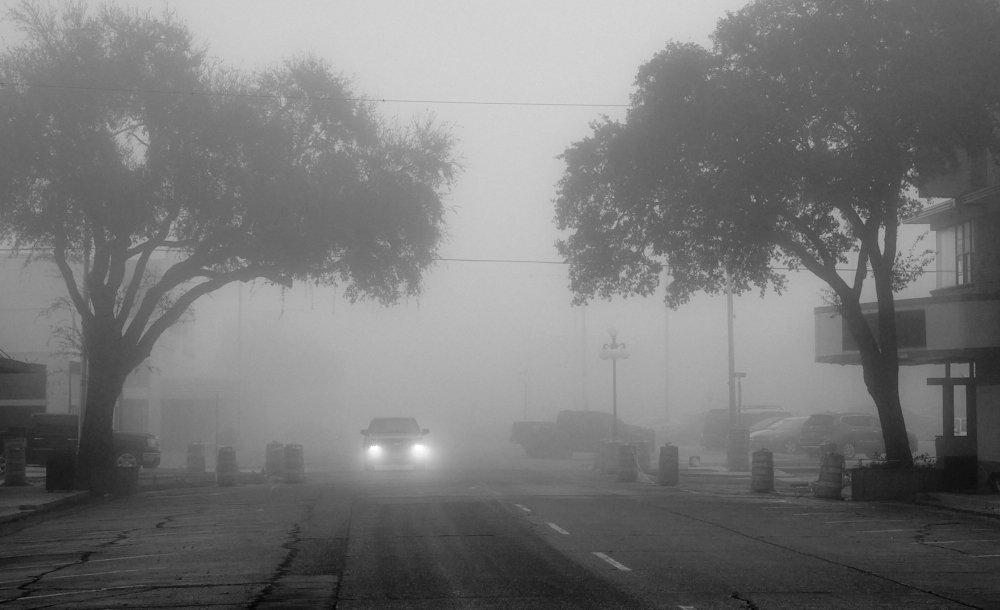 Foggy morn.jpg