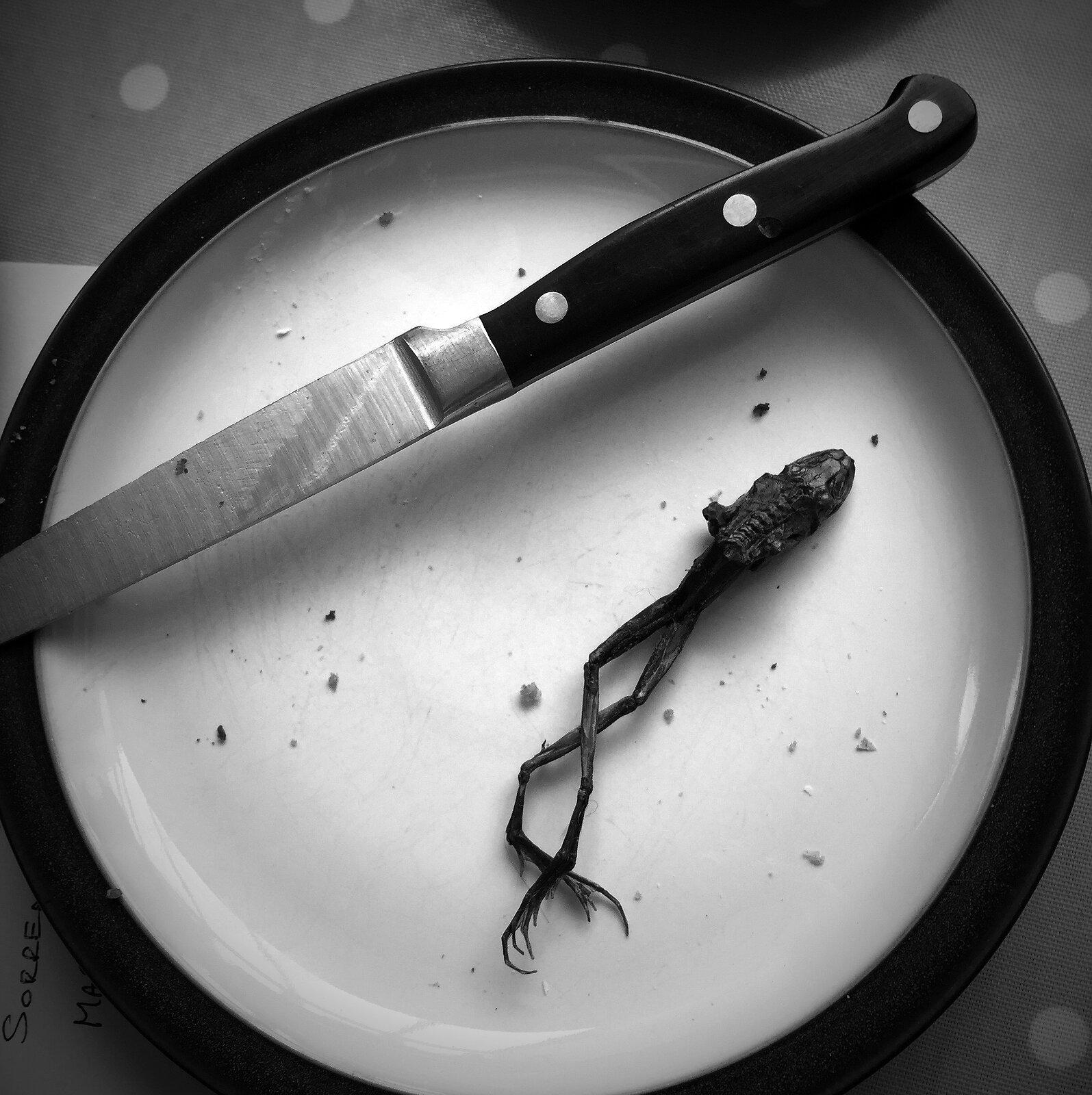 French_lunch.jpg