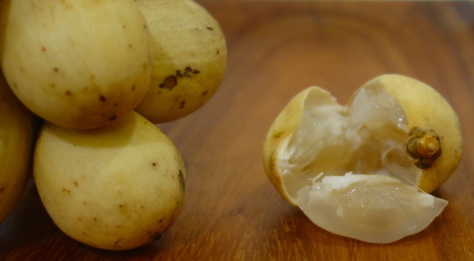 Fruit 4.jpg