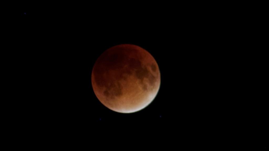 FZ200 Blood Moon 156_DxO.jpg