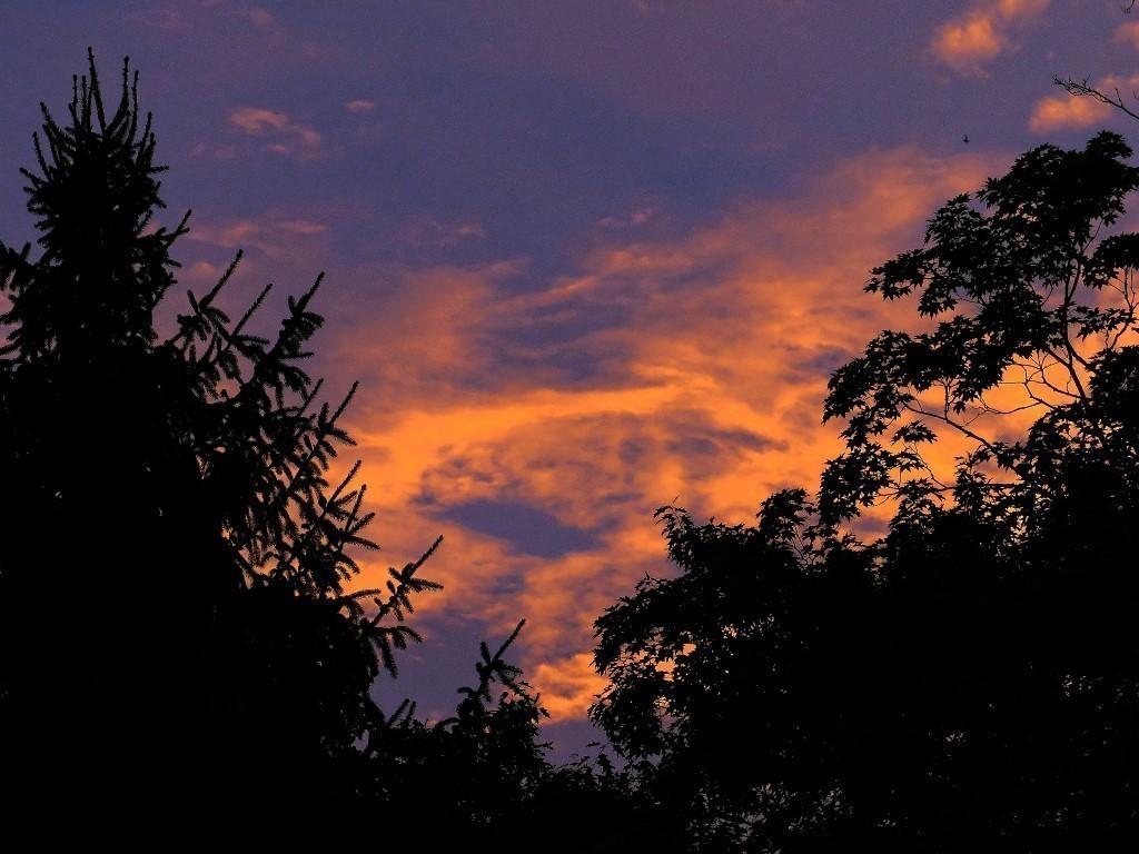 FZ200_Dawn_s_Early_light_008_DxO-1_Medium_.jpg