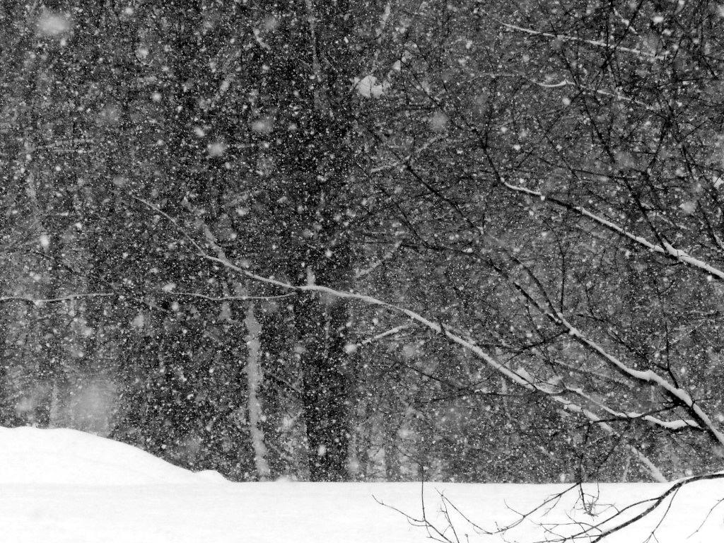 FZ200_winter_storm_gater_005_Medium_-001.JPG