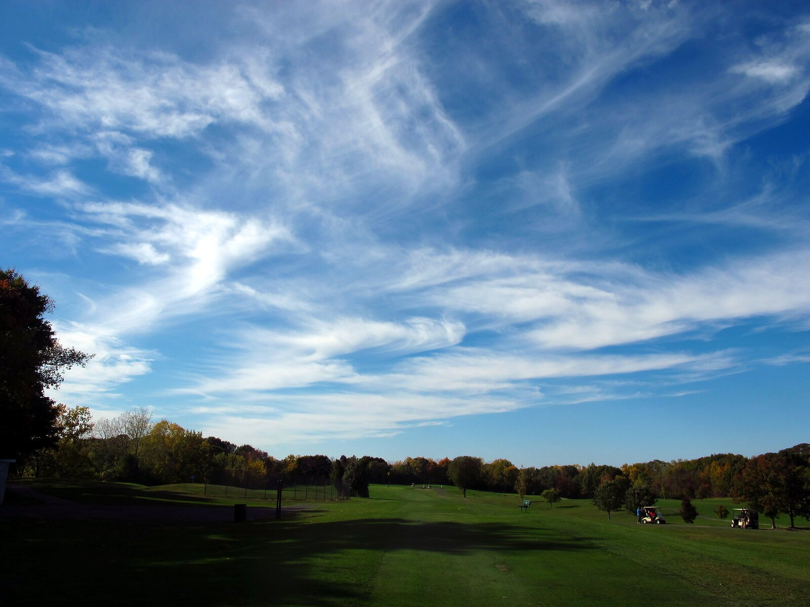 G12 skies Frear Park leaves 028-001.JPG