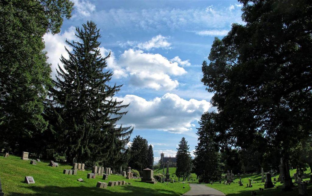 G12_clouds_Oakwood_cemetery_012-001_copy_Medium_.jpg