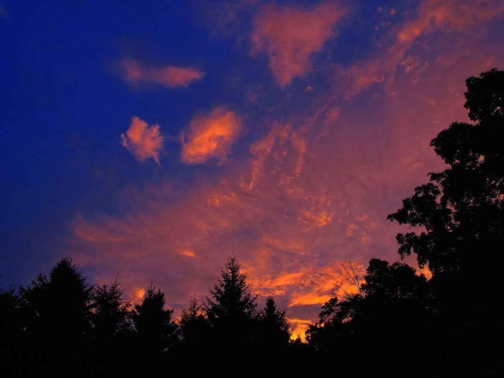 G12_Dawn_s_early_light_029_DxO-1_Medium_.jpg