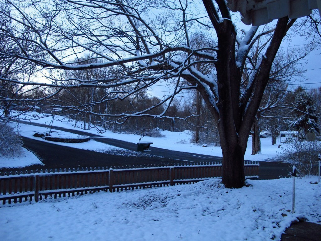 G12_snow_001_Medium_.JPG