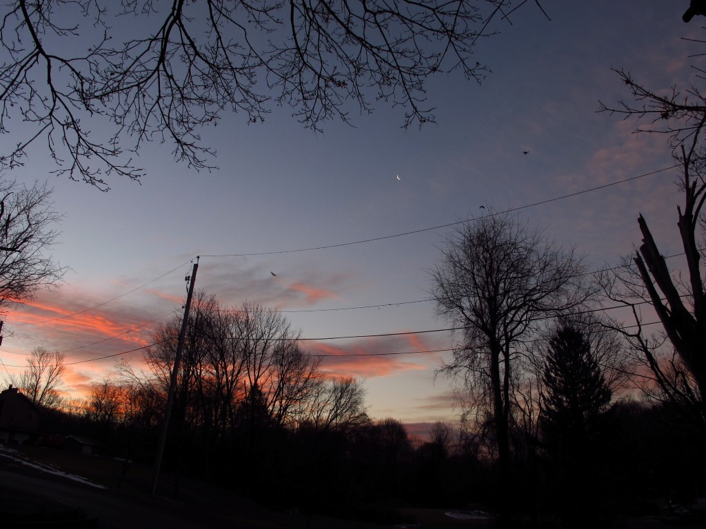 G12_sunrise_006_Medium_.JPG