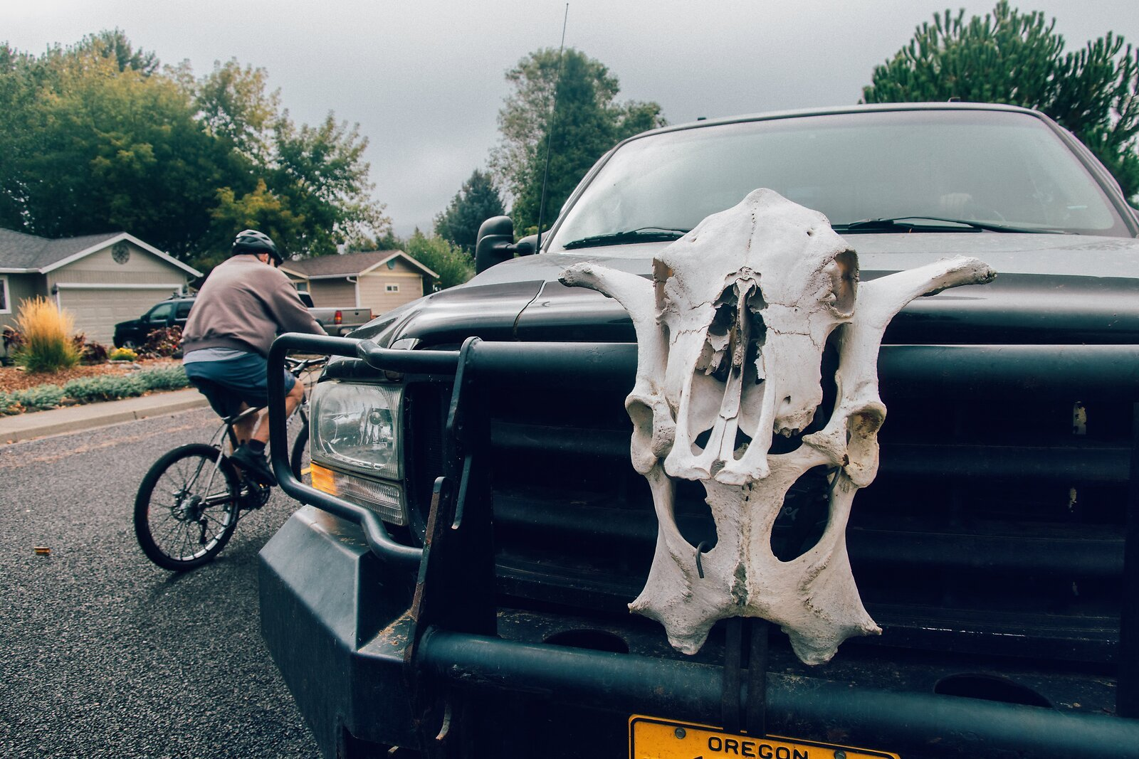 G1Xiii_Sept26_Truck_with_Cow_Skull.jpg
