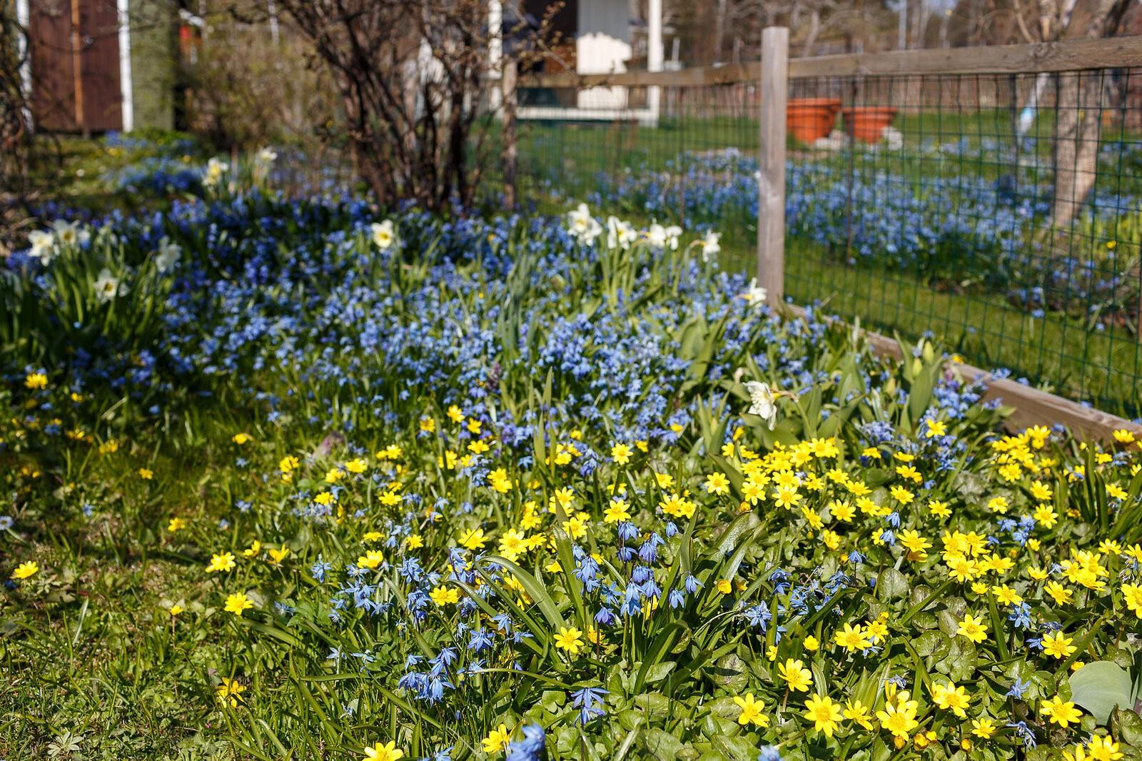 garden_2547_Canon_EOS_5D_Mark_III_EF35mm_f-1.4L_USM.jpg