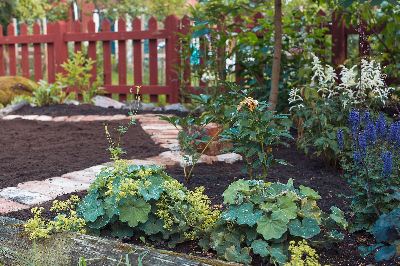 gardening_3188_Canon_EOS_5D_Mark_III_EF50mm_f-1.2L_USM.jpg