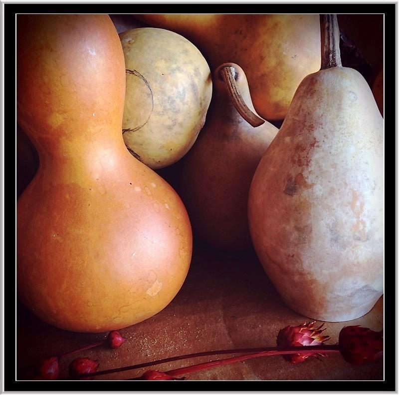 gourds.jpg