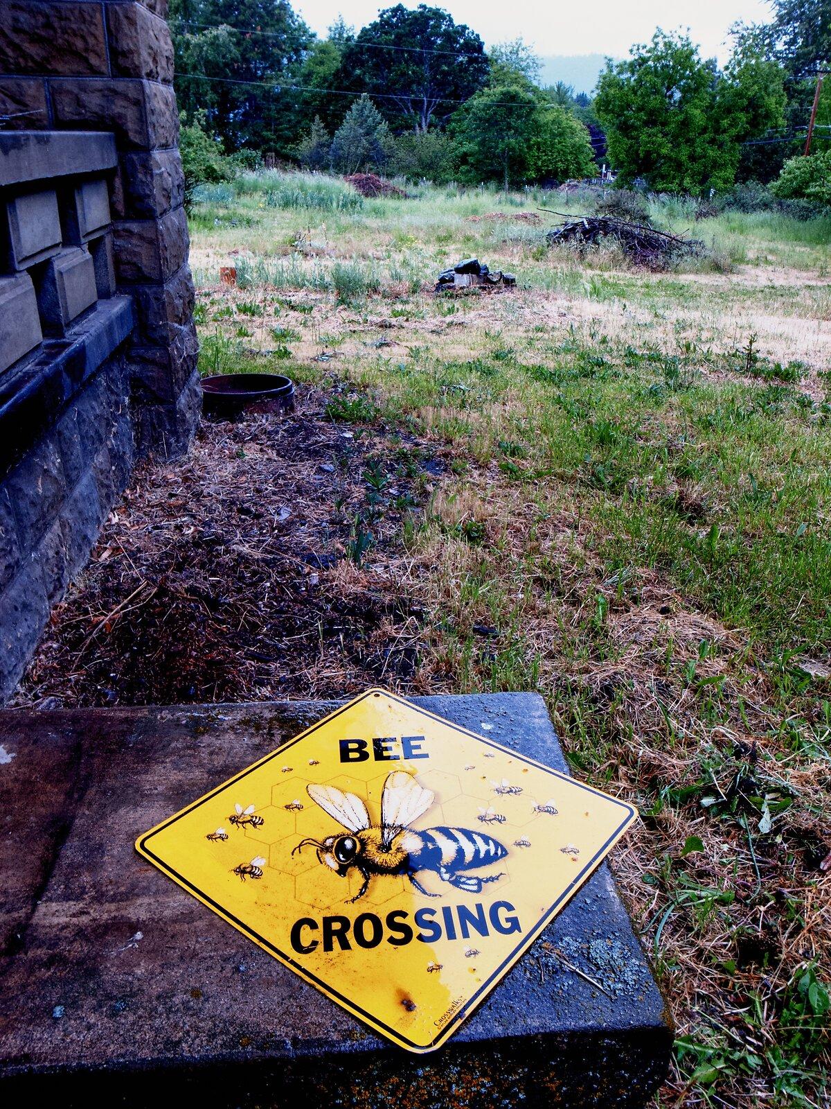 GRD_May17_Bee_Crossing.jpg