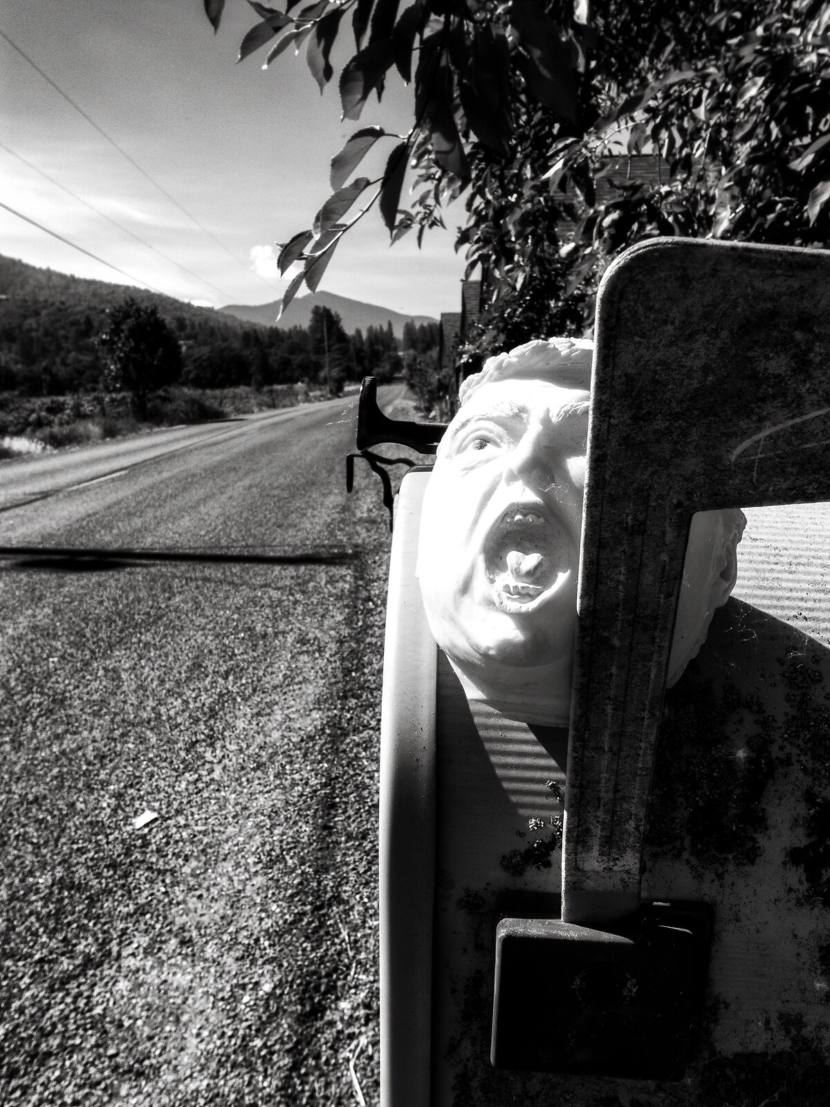 GRDii_May26_Trump_mailbox(SilverEfex).jpg