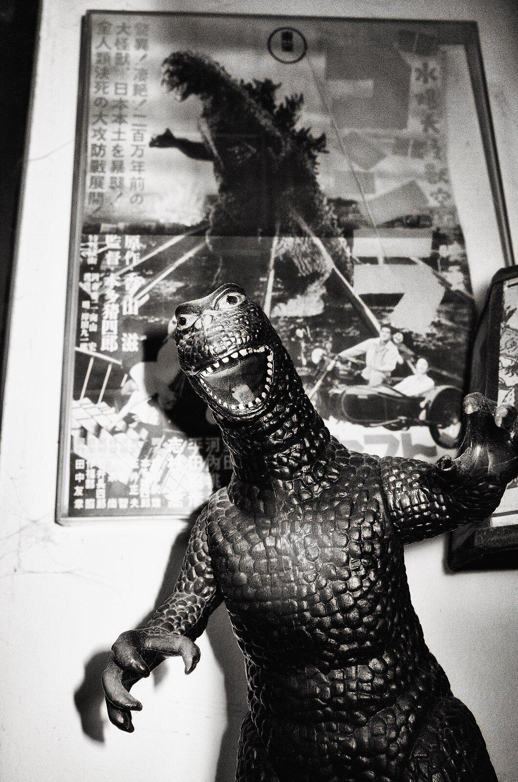 GRII_May24_My_Godzilla_Head-On.jpg