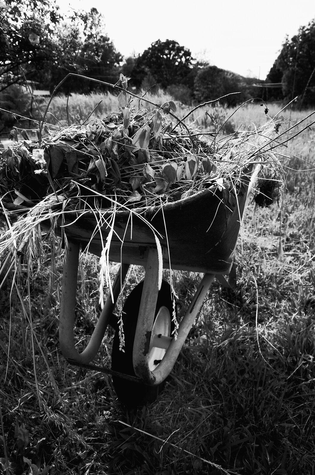 GRII_May25_Wheelbarrow#3.jpg