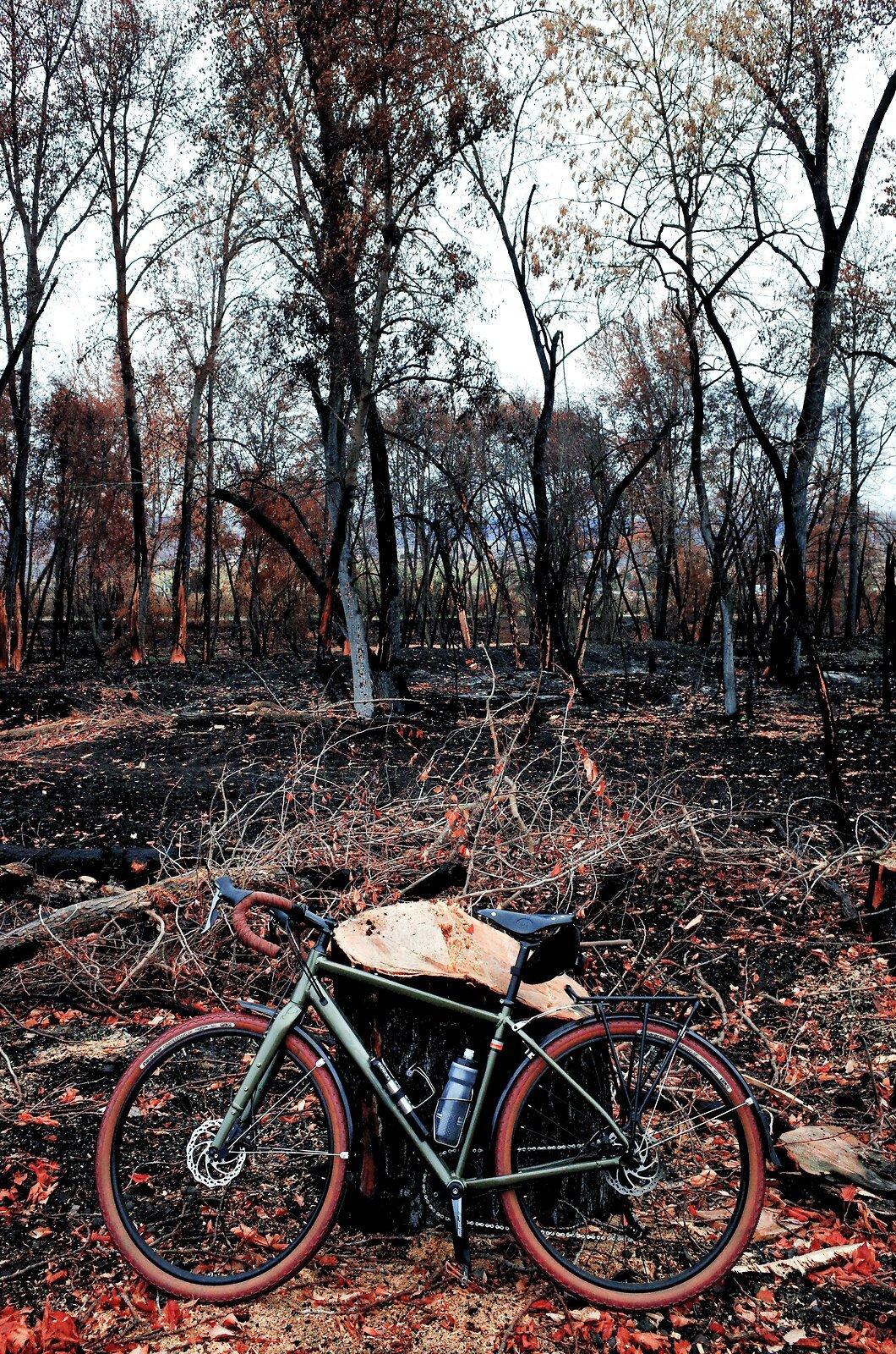 GRII_Nov7_Burned_Bike_Path#1.jpg