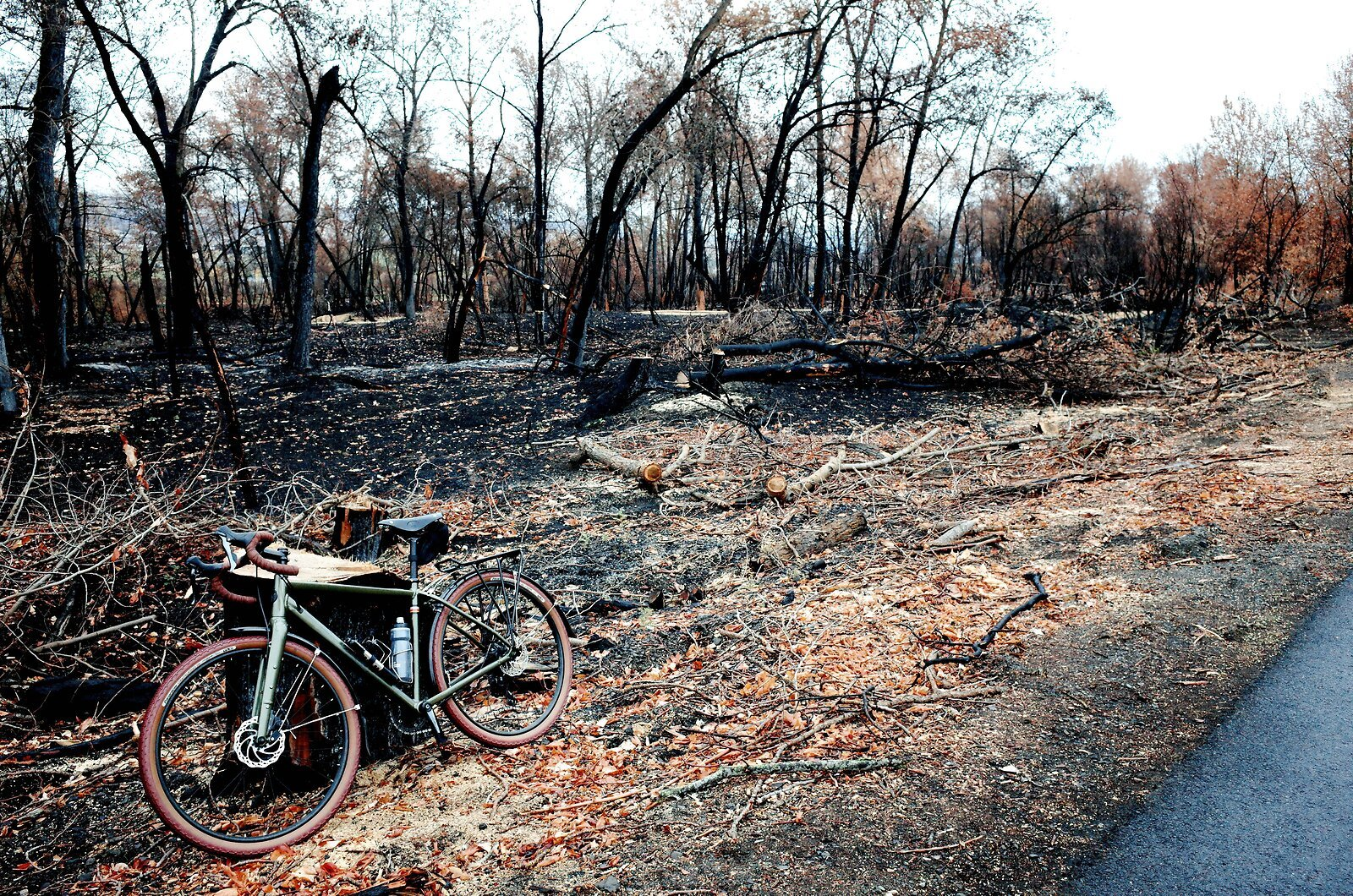 GRII_Nov7_Burned_Bike_Path#2.jpg