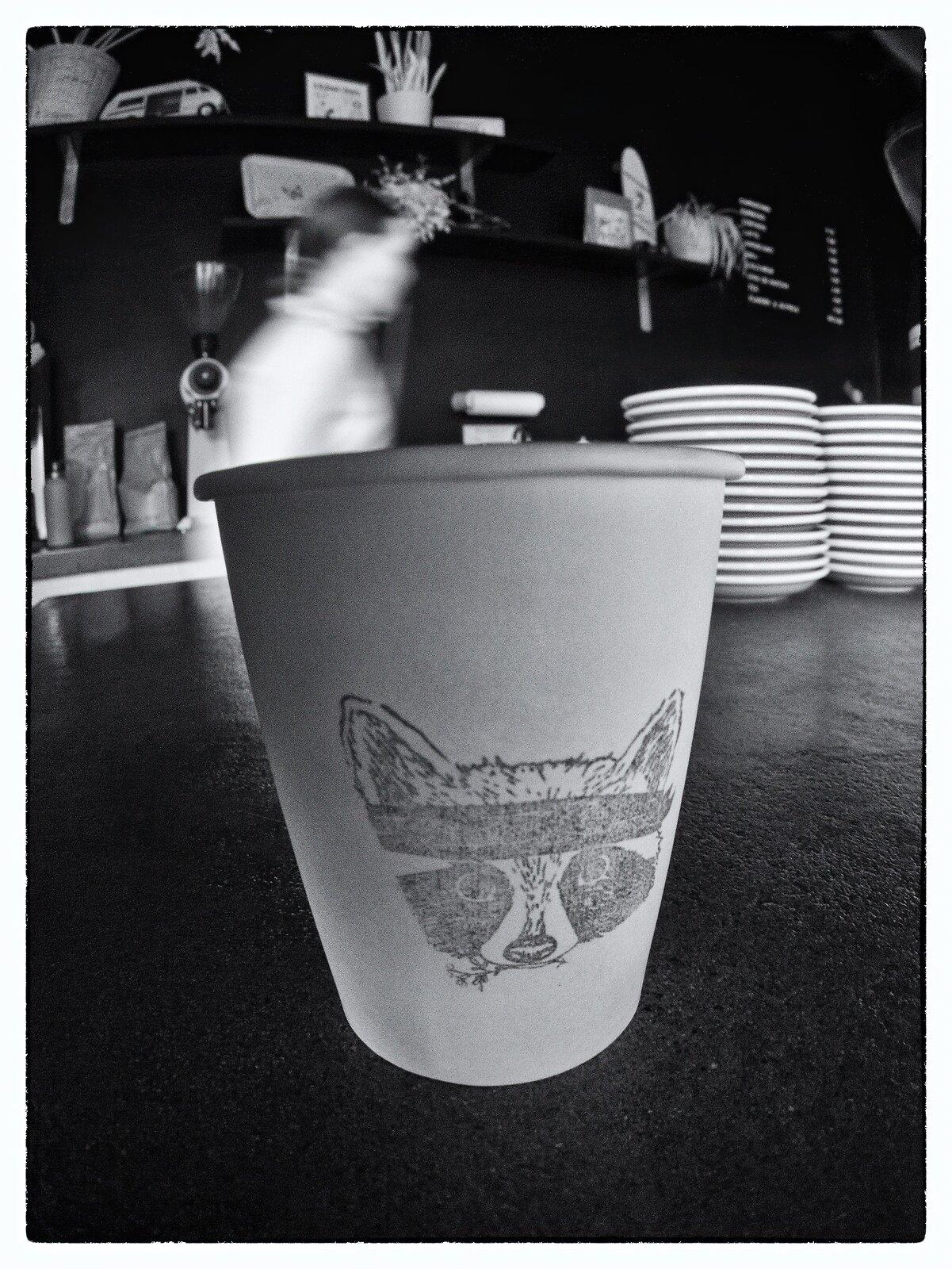 GX1_Feb22_21_raccoon_cappuccino.jpg