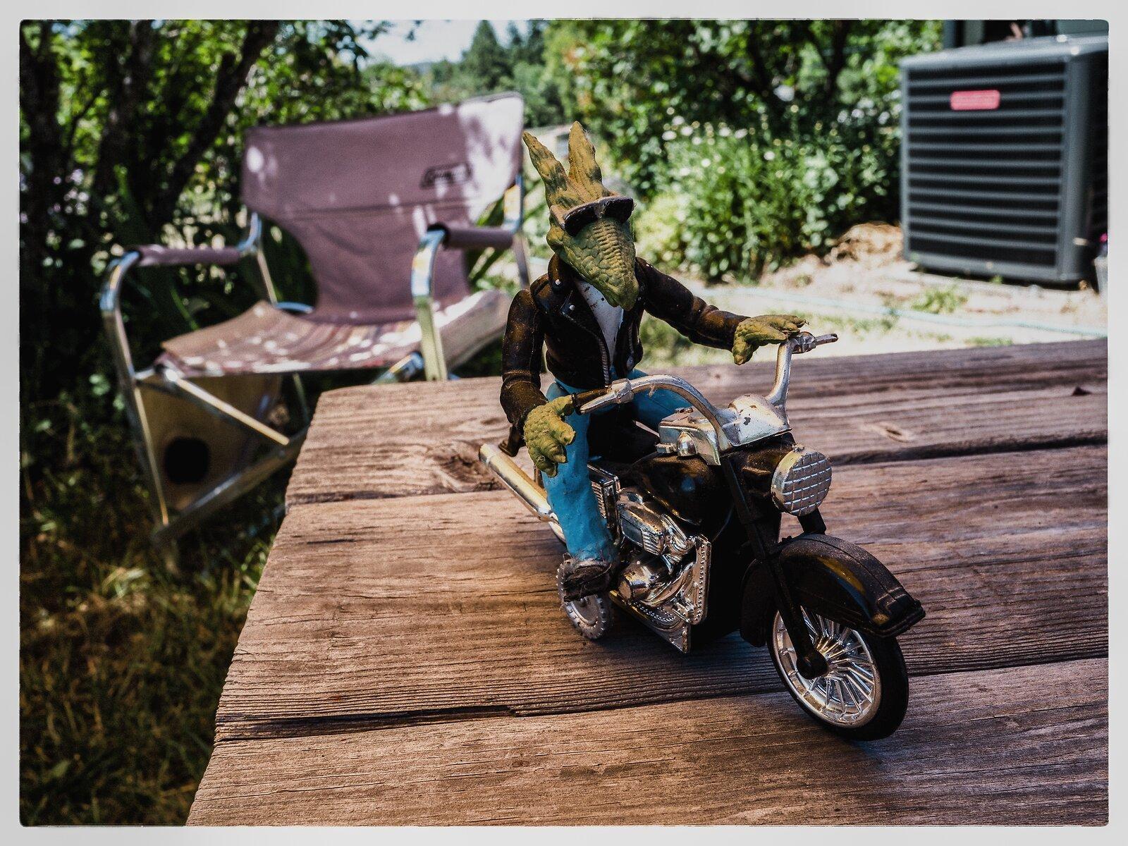 GX9_Jun20_dinosaur_biker_tabletop.jpg