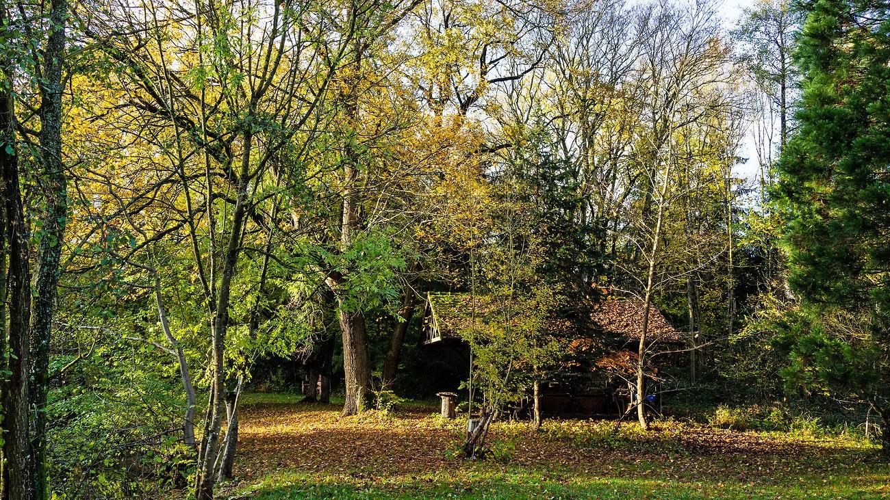 Herbst bei Pit.jpg