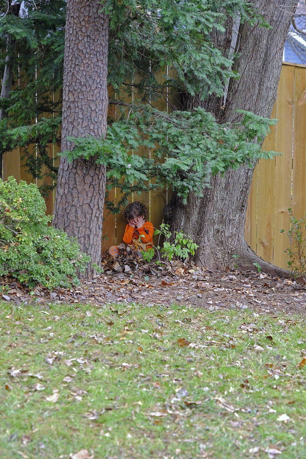 hide and seek 1.jpg