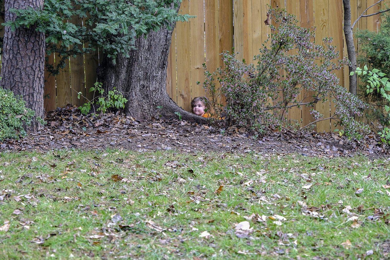 hide and seek 2.jpg
