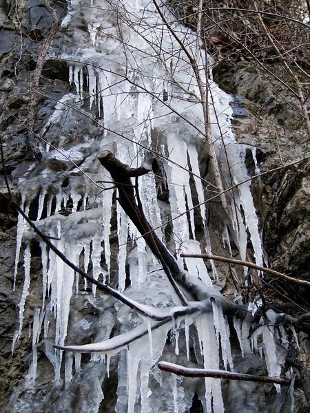 icicles-L.jpg