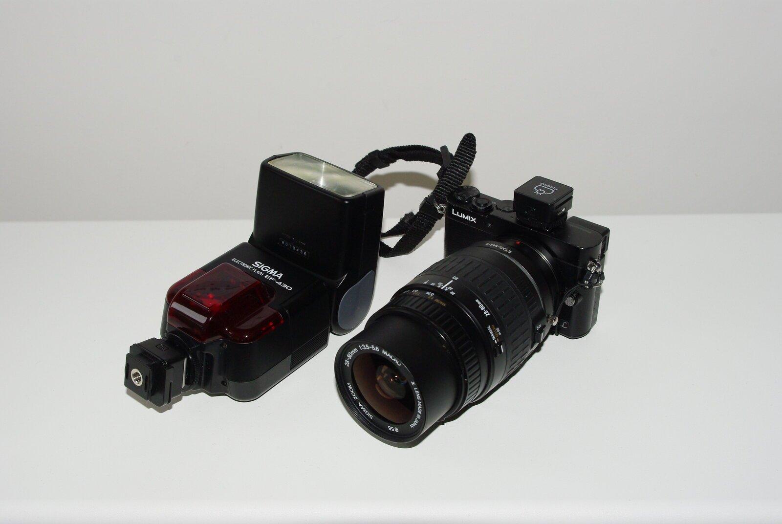 IMGP7699.JPG