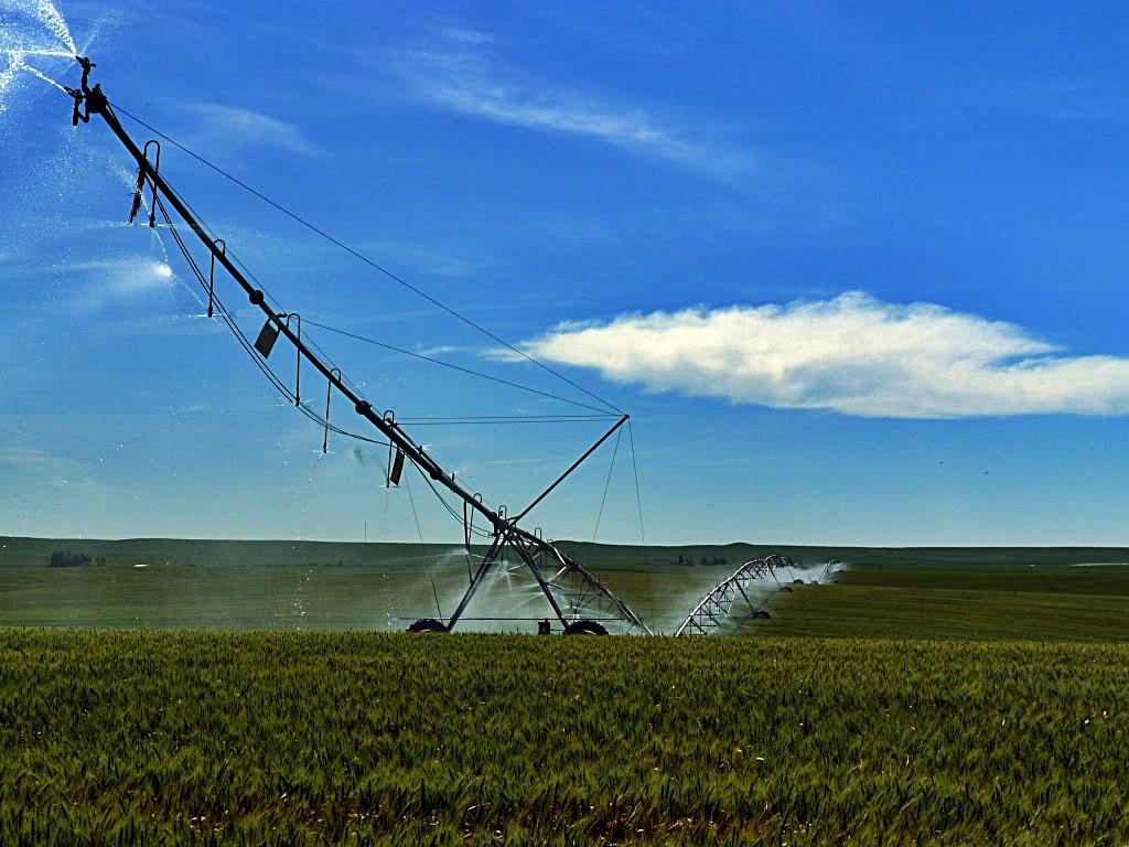 Irrigationpivotofthegods.jpg
