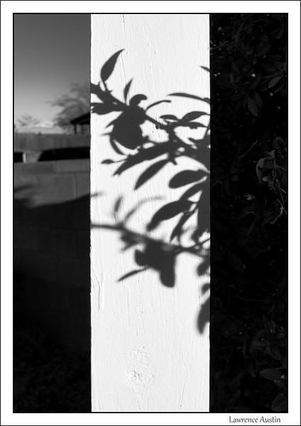 L2290203-Edit-L.jpg