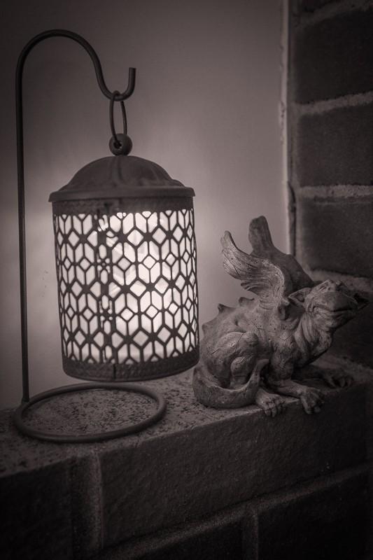Lantern and Earl (1 of 1).jpg