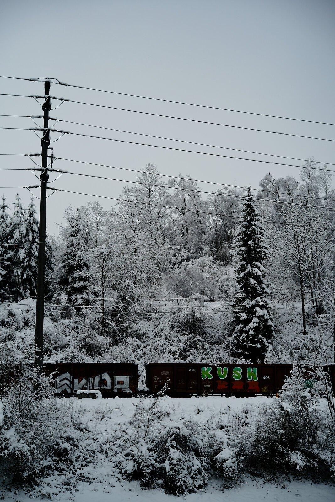 LM102943.jpg