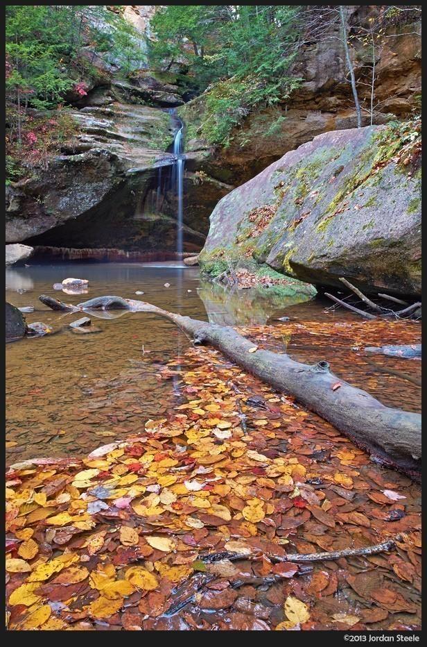 lower_falls_leaves.jpg