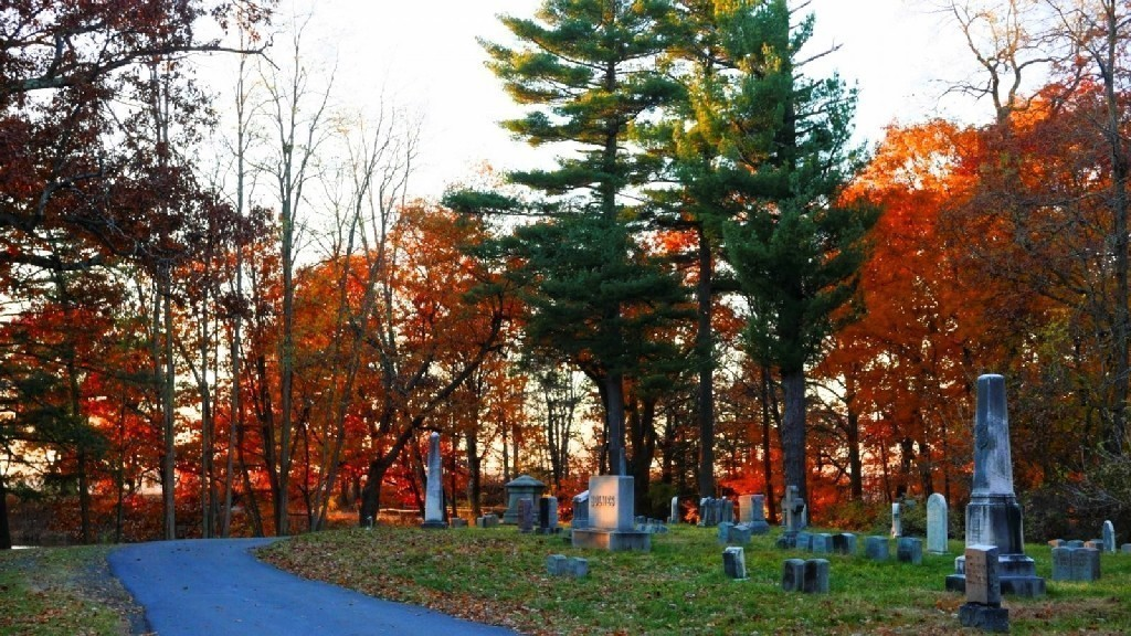 LX100 Oakwood luminous leaves sunset 015_DxO.jpg
