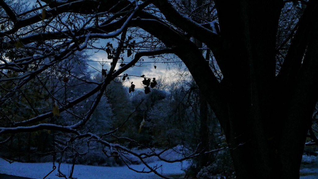 LX100_first_snow_stormy_skies_007_copy_1024x576.jpg
