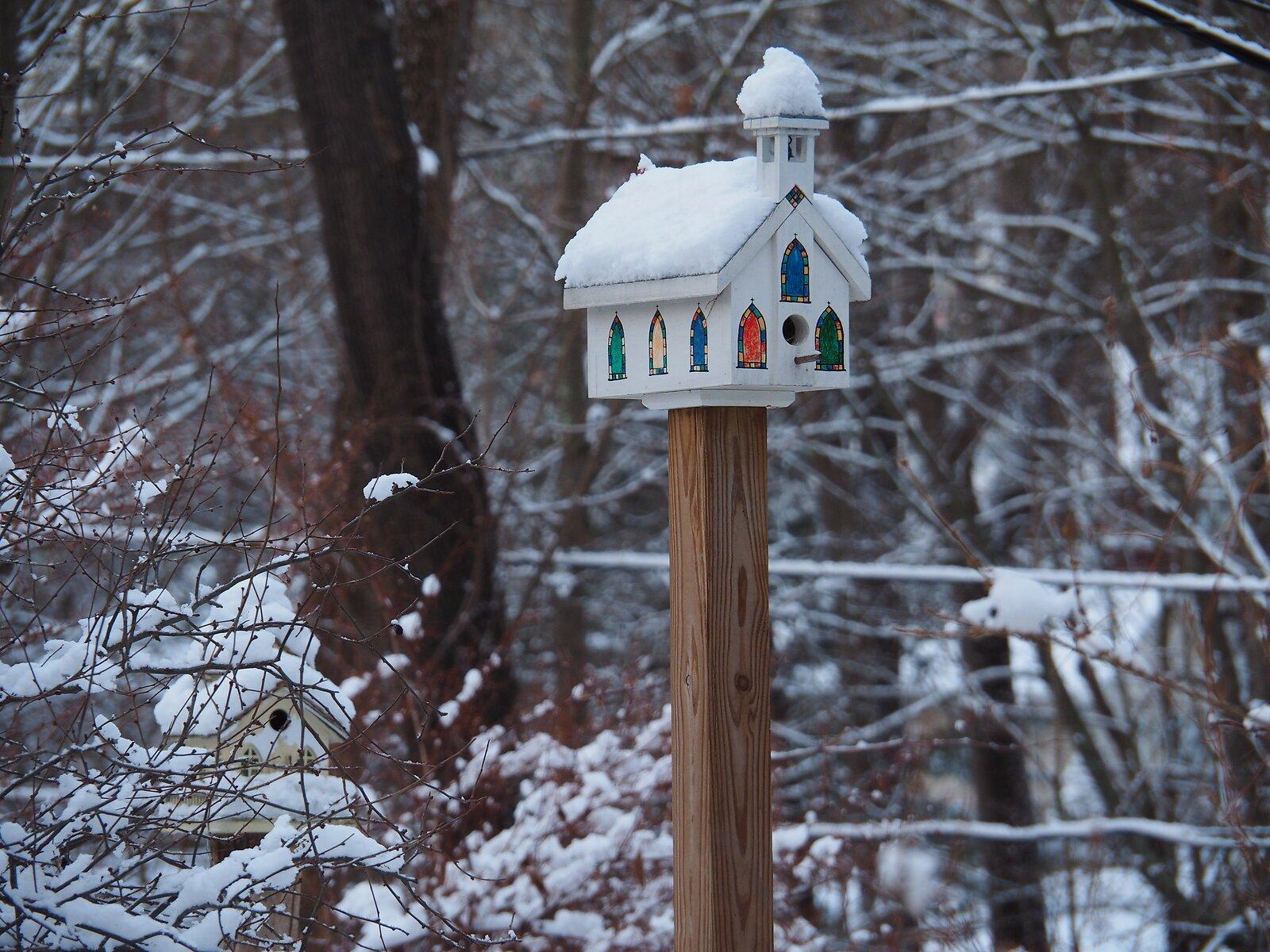 M1 Dec 26 snow 003.JPG