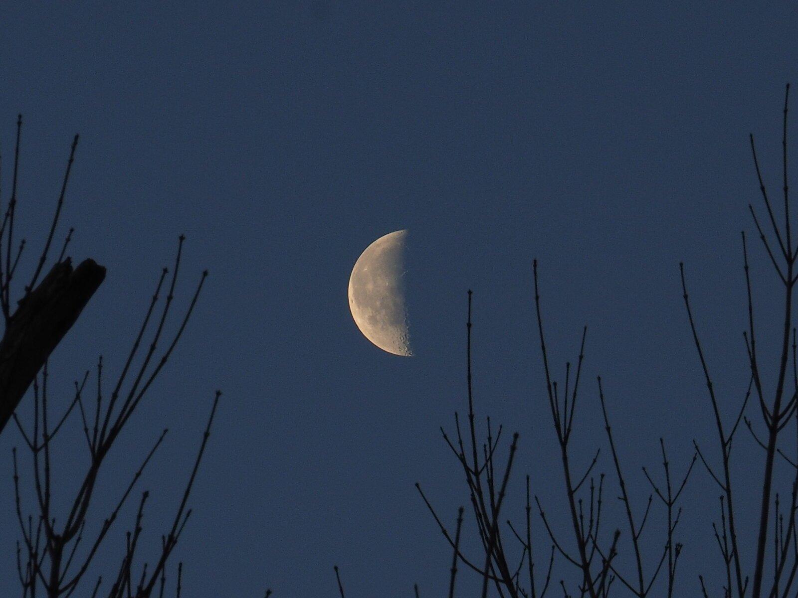 M1 Moon shot 001.JPG