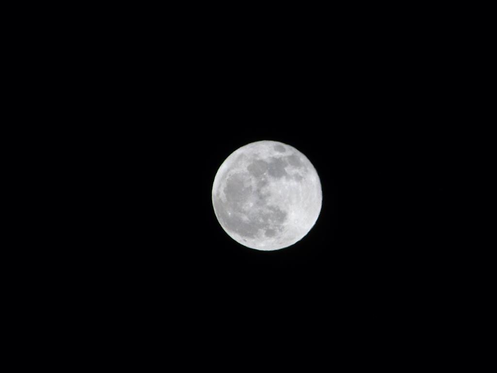 Moon_005_Medium_.JPG