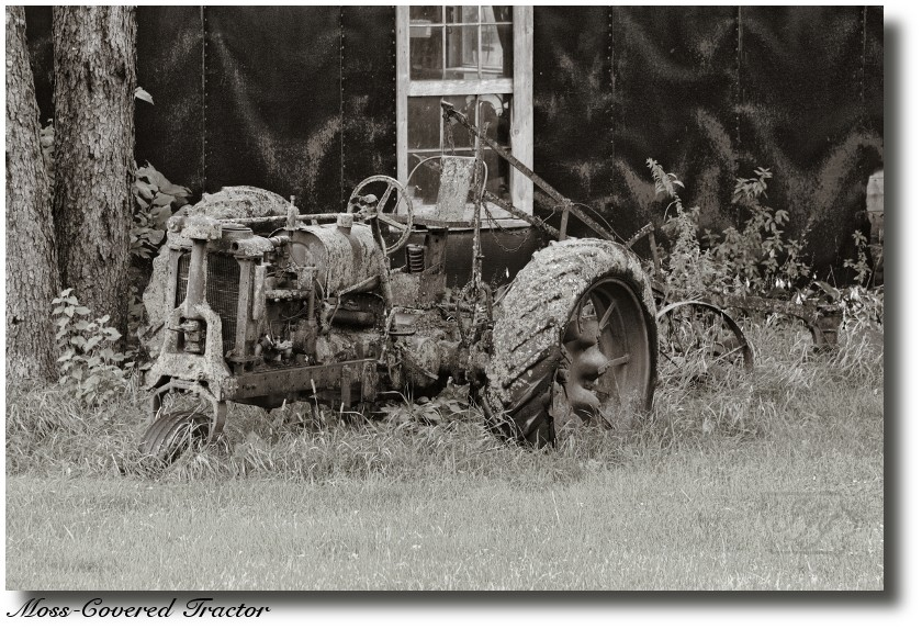 Moss%20Covered%20Tractor_1139%20post.jpg