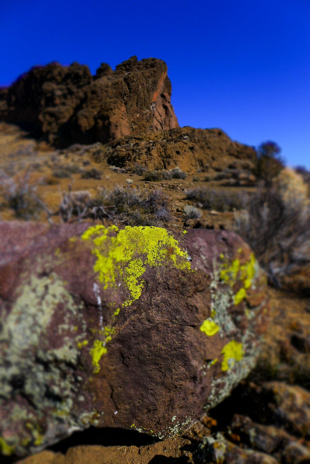 Moss Rock @ Fort Rock (Miniature FX).jpg
