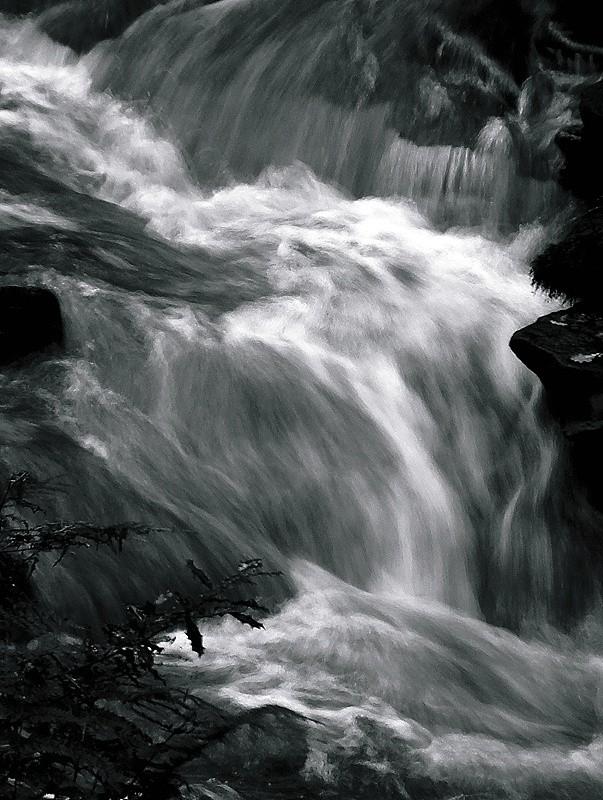 New_1_Silver_Water_1_800.jpg