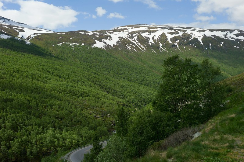Norway%20Leica%20M9%20Aurland-11-XL.jpg