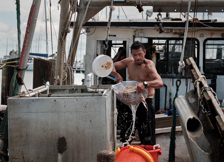 offloading shrimp.jpg