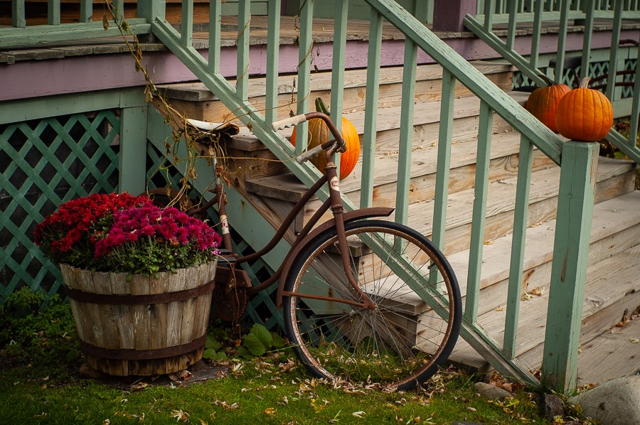 Old Bicycle.jpg