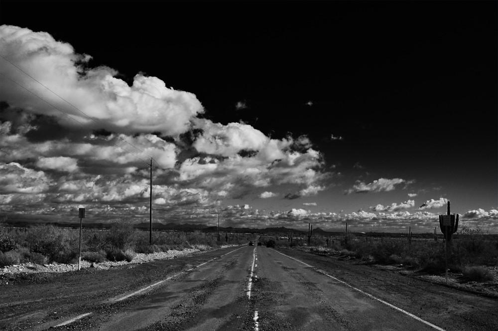 olive_road_looking_back.jpg