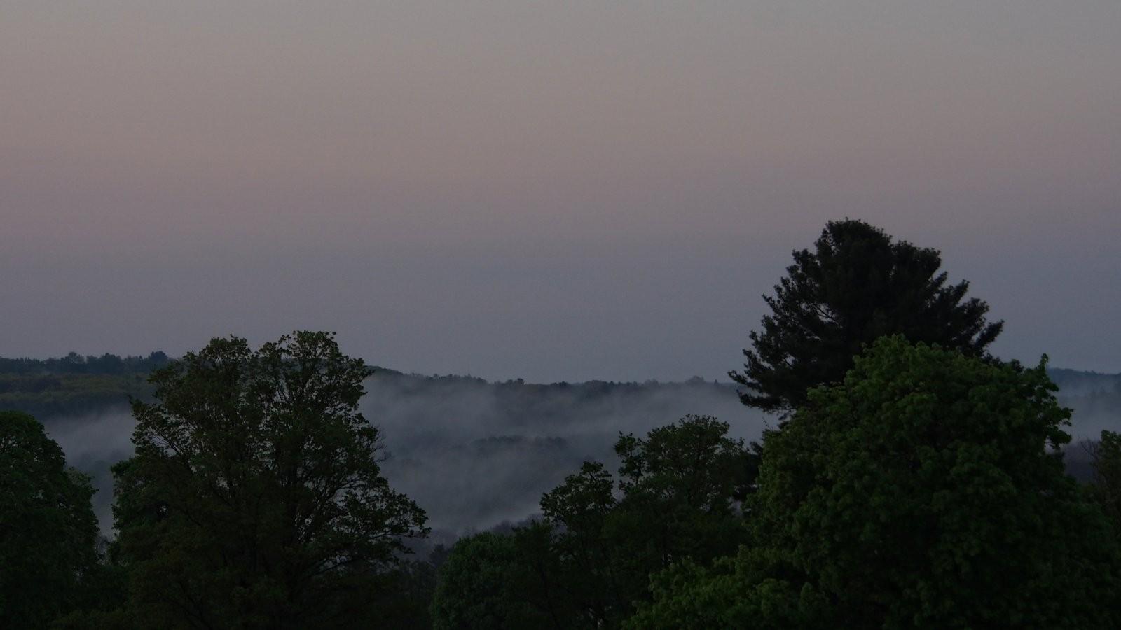 OMD Sunrise and fog at St. Mary's Cemetery 011 copy.jpg