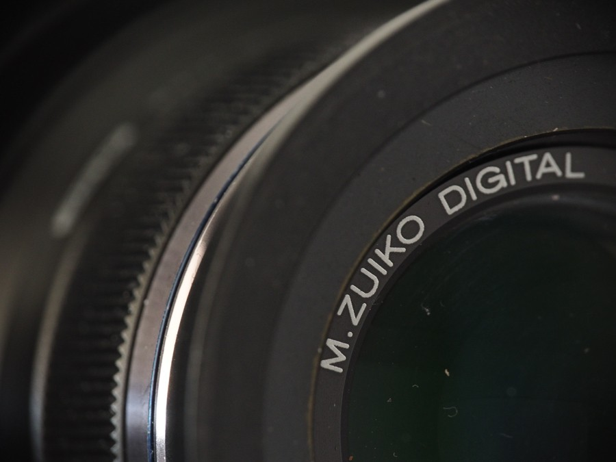 P5010004-2.jpg